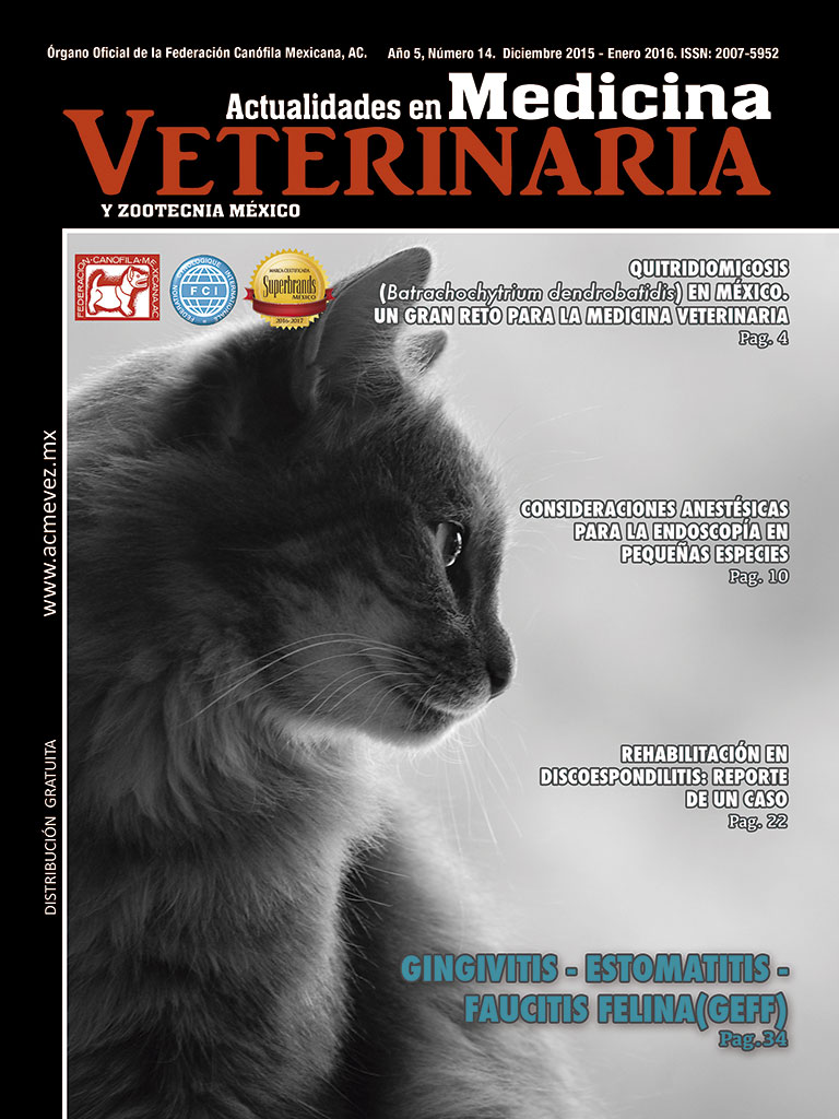portada14_web