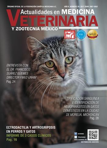 portada_20
